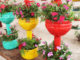 Recycle Plastic Bottles Into Colorful Flower Pots For Balconies And Small Gardens