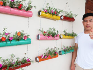 Use Plastic Pipes To Make Great Vertical Gardens, Portulaca (Moss Rose) Garden on Wall