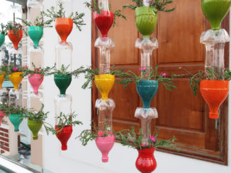 Recycle Plastic Bottles For Making Rainbow Flower Pots For Your Balcony And Garden