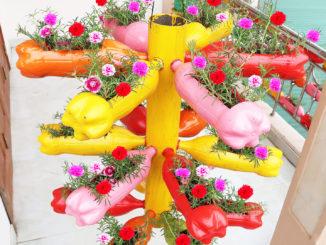 Wonderful plastic bottle garden ideas, Portulaca (Moss Rose) garden on the balcony
