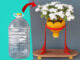 How To Recycle Plastic Bottles And PVC Pipes For Beautiful Flower Pot