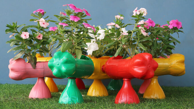 Unique And Innovative idea, Recycle Plastic Bottles Into A Beautiful, Colorful Flower Garden