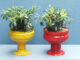 Beautiful DIY Potted Plant Ideas For The Garden