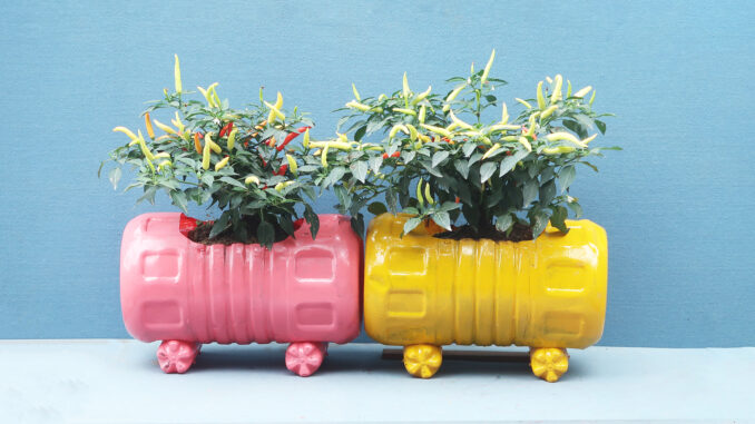 DIY Ideas Colorful Potted Gorgeous From Recycled Plastic Bottles For Small Gardens