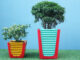 Creative Potted Ideas _ Reuse Plastic Chairs As Beautiful Planters