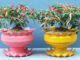 Recycling Plastic Bottles To Make Beautiful Potted Plants