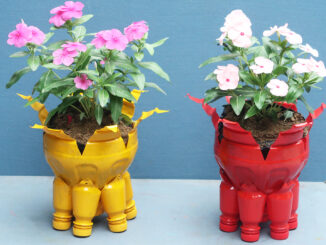 Recycle Plastic Bottles To Make Beautiful Colorful Flower Pots For Your Small Garden