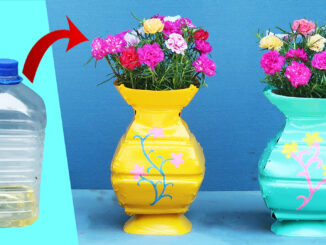 Recycle plastic bottles to make beautiful Portulaca (Mossrose) flower pots