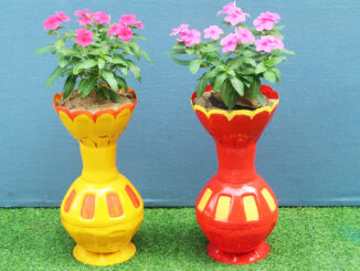 Reuse Plastic Bottle As A Beautiful Flower Pot