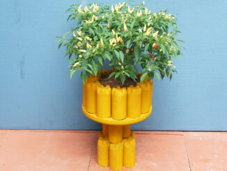 DIY beautiful cement pots from old plastic bottles