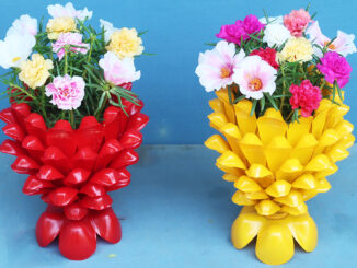 Creative flower pots from plastic bottles, How to make beautiful Portulaca Mossrose planters