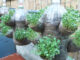 Hanging garden ideas automatically watering vegetables for small garden