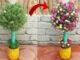 Bright vertical garden ideas growing Yo uso flores de Portulaca (Mossrose)