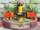 Creative outdoor fountain ideas | DIY aquarium from cement and bricks