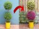 Creative vertical garden from plastic bottles, Gardening ideas for home