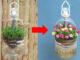 DIY automatic watering hanging garden to grow amazing Portulaca (Mossrose)